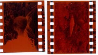 Scan of the original negatives.