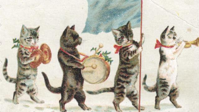 musicalillusioncats